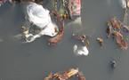 Gestion des déchets : un accord majeur du Grenelle en péril
