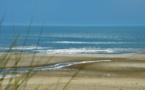 560 km de nage dans la Manche pour alerter sur la dégradation des mers