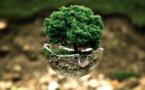 WAG, l'application qui veut aider à s'engager facilement pour l'environnement