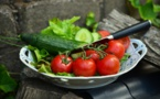 Alimentation, l'Europe identifie des taux inquiétants de polluants environnementaux