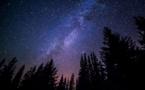 Ce que la science spatiale peut nous dire de nos forêts