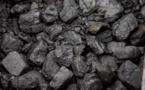 Etats-Unis : un lobbyiste du charbon en ministre de l'environnement