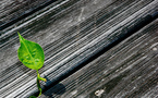 Dossier: l'intégration d'une démarche ESG dans le capital-investissement, une stratégie gagnant-gagnant