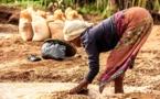 A Madagascar pour la journée mondiale de l'environnement
