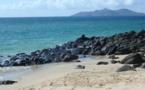 Changement de direction à la tête des parcs naturels marins