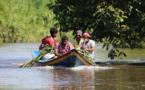 """Guyane : une biodiversité marine """"vitale"""" à protéger"""
