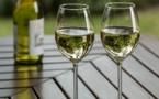 Alcoolisme, l'Etat français réfractaire à la transposition de l'opération « Janvier sobre »