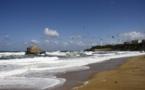 Erika : 20 ans après le naufrage, des conséquences écologiques