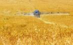 En 2018, les ventes de pesticides ont augmenté