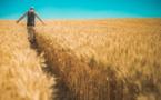 « Agribashing » : en réalité l'opinion est largement favorable aux agriculteurs