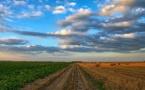 Réforme de la Politique agricole commune : le débat public commence