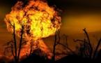 Incendie de Lubrizol : les conclusions du Sénat rendues début avril