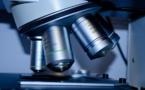Sanofi et Regeneron accélère les tests d'un traitement