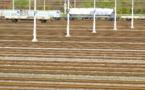 Fret ferroviaire :  gratuité des péages et relance du Perpignan-Rungis au programme
