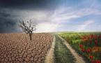 Climat : un demi-million de morts ces vingt dernières années d'après une ONG allemande
