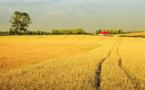 Réchauffement climatique : les agriculteurs en première ligne