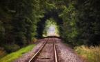 Paris-Granville : des trains au biocarburant pour une première mondiale