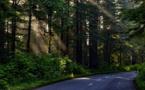 « Le Huffington Post » rejoue la carte de la ruralité anti écologique