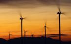 L'impact environnemental et les vertus écologiques de l'éolien en question