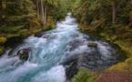 Écologie : les barrages hydroélectriques en question