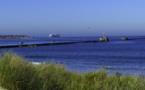 A Cherbourg, début de retour d'expérience autour de la digue écologique