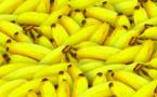 Interdiction des plastiques pour la plupart des fruits et légumes