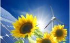 Lancement d'une consultation pour l'évolution des mécanismes de soutien du renouvelable