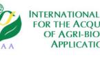175,2 millions d'hectares de cultures OGM dans le monde en 2013