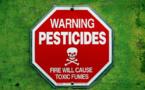 Pesticides dans les aliments, pas de risques alimentaires