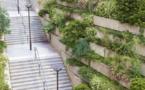L'opération « du vert près de chez moi » continue à Paris