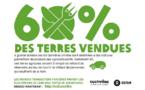 Agrocarburants, le plafond de l'Europe n'est pas une entrave au secteur