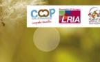 Le Languedoc-Roussillon à la pointe de la RSE