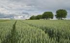 Pollution atmosphérique : les Chambres d'agriculture s'engagent