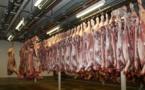 Des organismes de défense des animaux contre les abattoirs