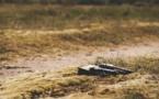 Environnement : la difficile reconnaissance de l'écocide en droit international