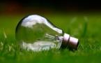 Transition énergétique : des ampoules LED distribuées par EDF