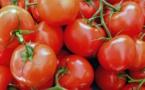 """""""Course zéro pesticide"""" : les enseignes de la grande distribution passées au crible"""
