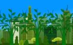 L'arrêté pics de pollution peut mieux faire selon Anne Hidalgo