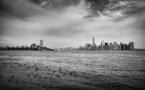 La ville de New-York s'attaque au « tout plastique » et adopte les sacs payants