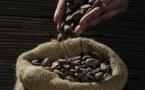 La sous-rémunération des producteurs de chocolat