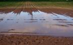 Les inondations entrainent une pollution de l'eau