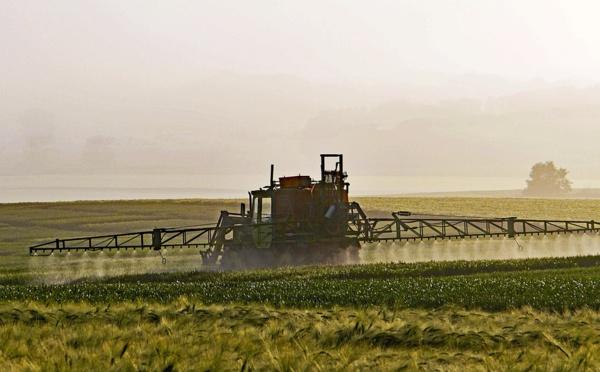 Un comité d'orientation pour réduire les pesticides
